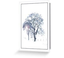 Winter's Tree, Greeting Card