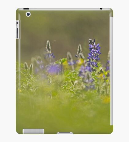 Selective focus on a cluster of Blue lupin (Lupinus pilosus) iPad Case/Skin