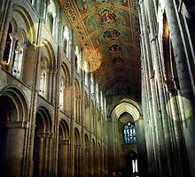 Ely Cathedral by Claire Dimond