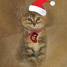 Merry Christmas Kitten by Catherine Hamilton-Veal  ©