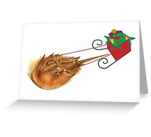 Horshoe Crab Sleigh Greeting Card