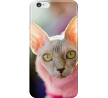 Sphynx cat wearing pink pullover iPhone Case/Skin