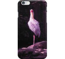 white crane iPhone Case/Skin