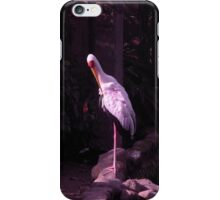 shy white crane iPhone Case/Skin