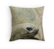 Tortoise Throw Pillow