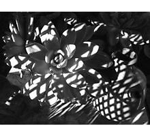 """ Wicker Chair Shadows "" Photographic Print"