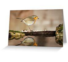 Reflecting Robin Greeting Card