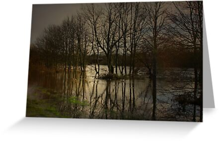 THE RIVER BREAKS FREE by leonie7