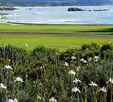 Pebble Beach's 18th Hole by GreenSaint