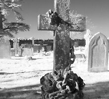 Infrared Photo - Naval Grave Marker by paulaross