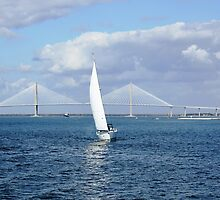 *Charleston Harbor* by DeeZ (D L Honeycutt)