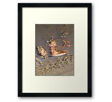 Lobster Bag Framed Print