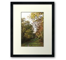 Winding Path to the Tunnel Framed Print