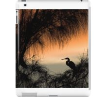 Home to Roost iPad Case/Skin