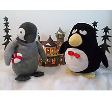 Penguins in a small village Photographic Print