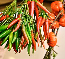 Hot Peppers by Ginadg73
