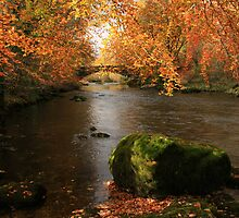 The River Brathay  by Linda Lyon