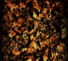 Leaves by Wintermute69