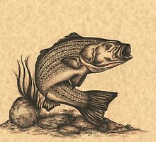 Striped Bass by Kathleen Kelly-Thompson