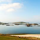 The Scillies in Summertime by Alex Cassels