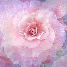 """Begonia (from """"Painted flowers"""" collection) by EvaMarIza"""