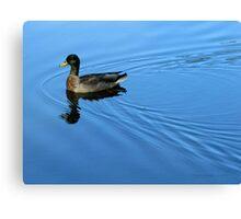 Blue Luxury Canvas Print