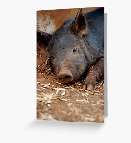 Perfect Piglet XI Greeting Card