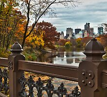 Overlooking The Lake ~ New York City ~ USA by Sabine Jacobs