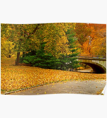 Fall in Central Park ~ New York City ~ USA Poster