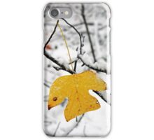 Hanging by a stem as seasons change... iPhone Case/Skin