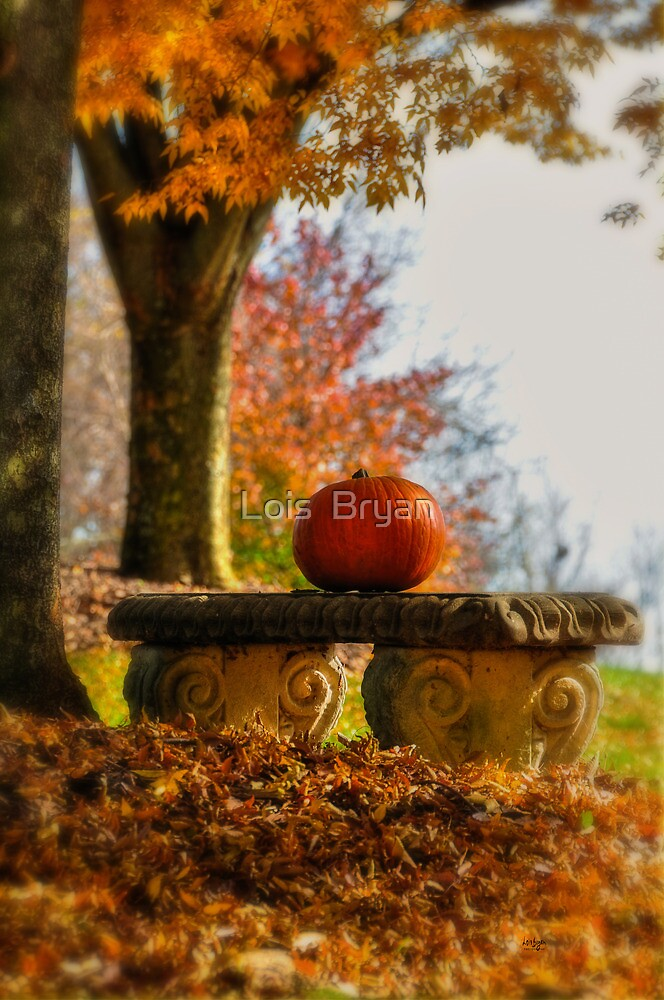 The Last Pumpkin by Lois  Bryan