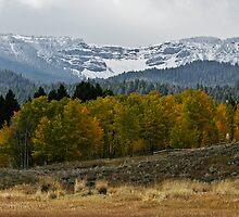 Centennial Valley; Fall View #1 by Ken McElroy