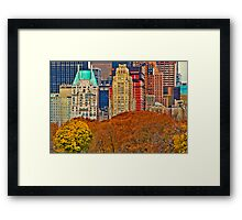 Central Park South ~ New York City ~ USA Framed Print