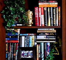 Office Library Shelf by phil decocco