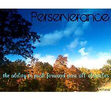 Perserverance Photographic Print