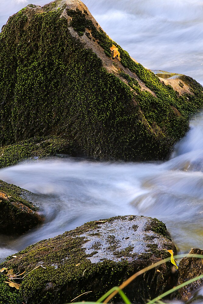 Textured - Merced River, Yosemite National Park, CA by Matthew Kocin