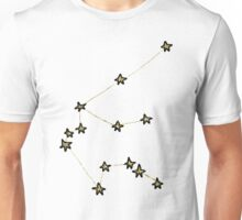 Aquarius x Astrology x Zodiac Unisex T-Shirt