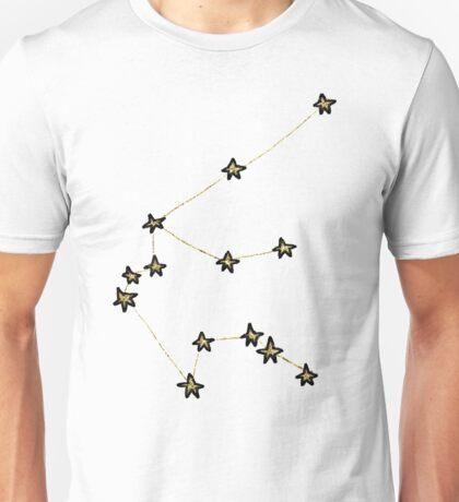 Aquarius x Astrology x Zodiac Unisex T-Shirt