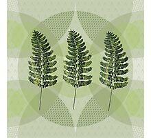 Green love Photographic Print