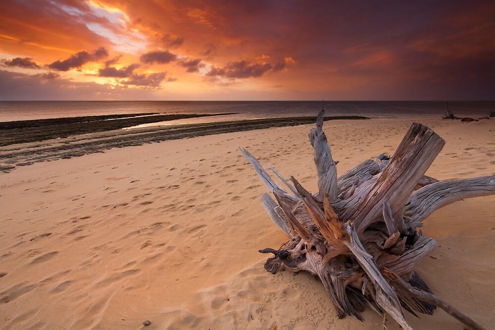 Green Island Sunrise by Greg  Sorenson