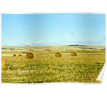 harvest on the prairies Poster