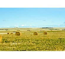 harvest on the prairies Photographic Print