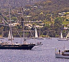 Mawson Flotilla - Young Endeavour by TonyCrehan