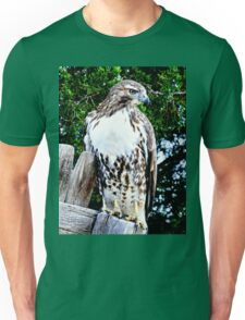 Red Tailed Hawk Unisex T-Shirt