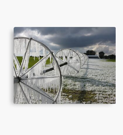 Now thats called ice ... ! Canvas Print