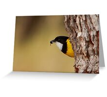 Lunchtime - Golden Whistler with fly Greeting Card