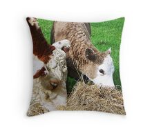 *Halo & Heather* a little dry food to enjoy Throw Pillow