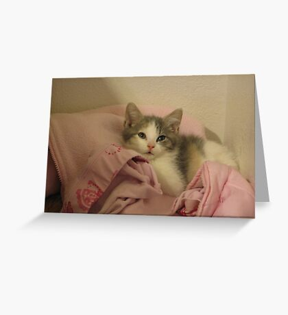 Blue in Pink Greeting Card