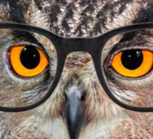 Owl with glasses! Sticker
