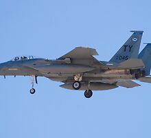 F-15C Eagle #TY AF 81-0045 On Approach by Henry Plumley